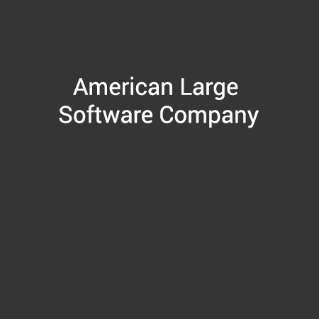 American Large Software Company